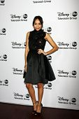 LOS ANGELES - JAN 10:  Ashley Madekwe attends the ABC TCA Winter 2013 Party at Langham Huntington Ho