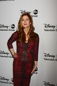 LOS ANGELES - JAN 10:  Dana Delany attends the ABC TCA Winter 2013 Party at Langham Huntington Hotel
