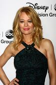 LOS ANGELES - JAN 10:  Jeri Ryan attends the ABC TCA Winter 2013 Party at Langham Huntington Hotel o