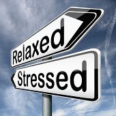 stress therapy and management helps in relaxation reduce tension and relief negativity become relaxe