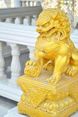 Gold Chinese Lion