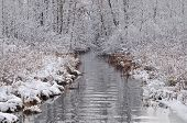 Winter Tamarack Creek
