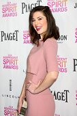 LOS ANGELES - JAN 12:  Mary Elizabeth Winstead arrives at the 2013 Film Inependent nominees brunch at BOA Steakhouse on January 12, 2013 in West Hollywood, CA