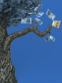 Tree Of Wealth