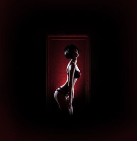 picture of matron  - Young sexy woman in erotic lingerie standing in the frame - JPG