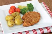 Turkey escalopes with vegetables