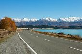 Autumn  Road.  Fairlie-Tekapo Road, Canterbury, New Zealand