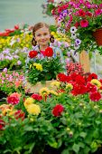 Flowers for garden - Lovely girl holding flowers in garden center