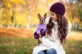 stock photo of miniature pinscher  - beautiful woman and his dog in autumn park - JPG