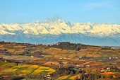 View of autumnal hills with vineyards and snowy mountain peaks on background in Piedmont, Northern Italy.