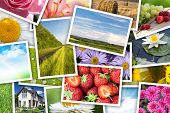 Stack of printed pictures collage - flowers, landscapes, food