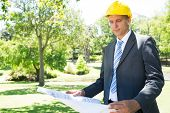 Well dressed businessman studying blueprint in park