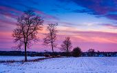 Sunset Over Trees And Snow Covered Farm Fields In Rural Frederick County, Maryland.