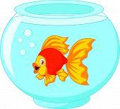 Gold fish cartoon in aquarium