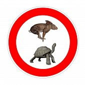 foto of the hare tortoise  - Hare and galapagos turtle inside speed limit symbol in white background - JPG