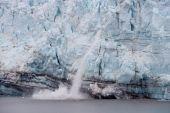 Calving Of Margerie Glacier In Glacier Bay