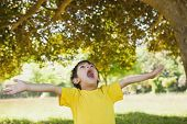 Young boy with arms outstretched looking up in the park