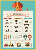 stock photo of labradors  - Dogs infographics  - JPG