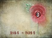 Graffiti style remembrance day poppy on grunge background. Dates on 1914-2014 in stencil style to co