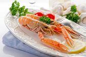 pic of norway lobster  - norwey lobster with tomatoes and lemon on dish - JPG