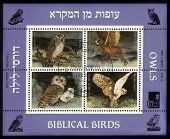 Biblical Birds - Owls