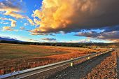 stock photo of pampa  - In the steppe runs a gravel road - JPG