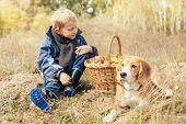 Pretty Little Boy On Autumn Forest Glade