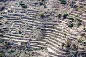 pic of jabal  - Image of landscape Saiq Plateau and terrace cultivation in Oman - JPG