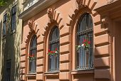 Ornate Wrought Iron Window Shutters With Germanium Plants And Terracotta Wall