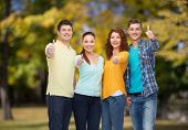 friendship, summer vacation, nature and people concept - group of smiling teenagers showing thumbs u