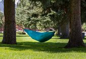 .Person Reading Book In Hammock In Park