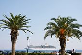 Palm Trees On The Solomos Square
