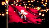 Hongkong National Flag Torn Burned War Freedom Night 3D