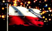 Poland National Flag Torn Burned War Freedom Night 3D