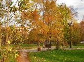 Autumn. City Park With Golden Foliage