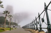 Thick Fog In The Morning At Sydney Harbour Bridge
