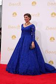 LOS ANGELES - AUG 25:  Mayim Bialik at the 2014 Primetime Emmy Awards - Arrivals at Nokia at LA Live
