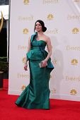 LOS ANGELES - AUG 25:  Laura Prepon at the 2014 Primetime Emmy Awards - Arrivals at Nokia at LA Live