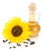 Sunflower with seeds and oil isolated on white