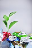 Green plant growing among cans on grey background