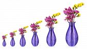 Evolution concept.Beautiful summer flowers in vases isolated on white