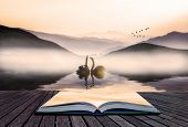 Book Concept Beautiful Romantic Image Of Swans On Misty Lake With Mountains In Background