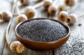 picture of opiate  - Poppy seeds with heads on a wooden table