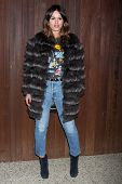 LOS ANGELES - JAN 22:  Atlanta de Cadenet Taylor at the Alexa Chung For AG Los Angeles Launch Party at a Private Location on January 22, 2015 in Beverly Hills, CA