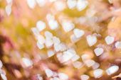 White bokeh on pink shade
