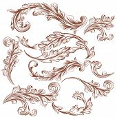 Collection Of Vector Hand Drawn Floral Ornaments For Design