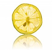 Lemon Slice And Seed Isolated On White Background Back Lighted