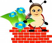 Ladybug Boy On Brick Wall