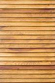 Beech Wood Wardrobe Doors