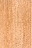 Maple Wood Pattern